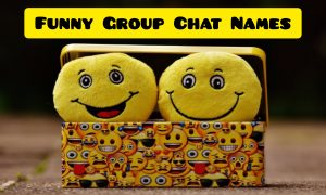 900+ WhatsApp Group Names List ( For Girls, Family, Friends & Funny )