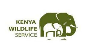 APPLY - Kenya Wildlife Service Recruitment 2020/2021 – Dates, Application & Guidelines